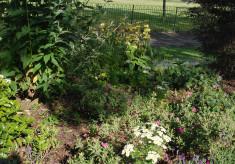 Our Garden Team
