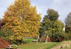Find out about Blakers Park